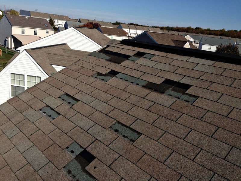 Wind Damaged Shingles Image